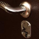 Кованые двери: входные и межкомнатные